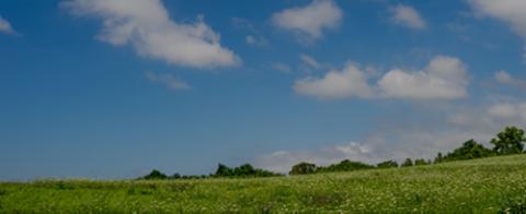 日本海洋散骨協会 鹿児島散骨 鹿児島海洋葬