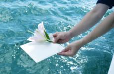天国への手紙